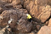 来青岛旅游,亲子游出行,海边爬石头、捉蟹子,帆船体验必须知道的潮汐常识