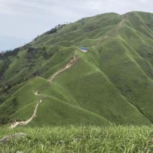 高山草甸旅游景点攻略图