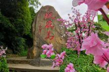 宁波周边游   浪漫桃花岛,心怀武侠梦。