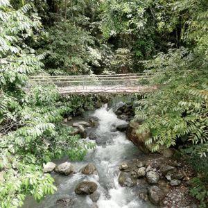 兰卡威Umgawa丛林飞跃旅游景点攻略图