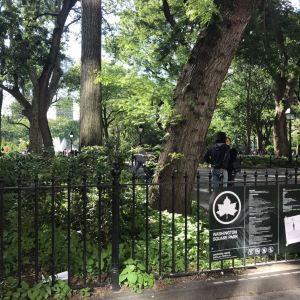 华盛顿广场公园旅游景点攻略图