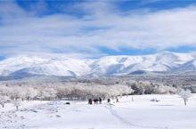 玩北海道知床特色活动,赏魅力世界自然遗产
