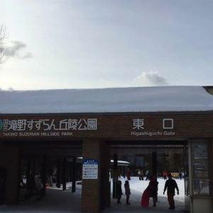 国营泷野铃兰丘陵公园旅游景点攻略图
