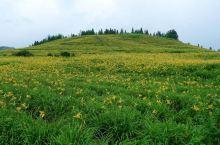 建宁是三明市的一个县,和江西交界,建宁是莲花的家乡,建宁的白莲全国闻名。不过建宁除了荷花还有桃花梨花