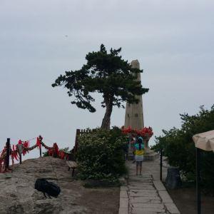杨公塔旅游景点攻略图