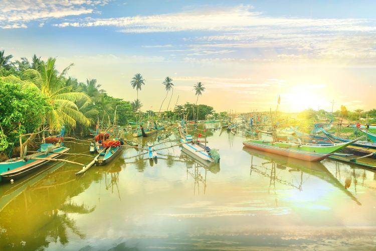 Negombo Lagoon