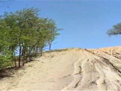 大荔沙苑同州沙漠