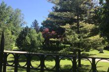 公墓,美得像公园
