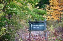 十月多伦多,爱德华花园的秋色