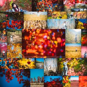 洋湖沟游记图文-【時光日誌】盘锦 本溪 · 河蟹、枫叶和棉花糖的世界