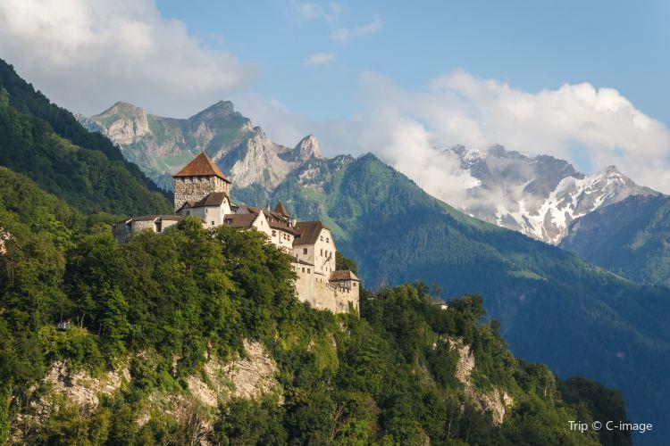 瓦杜茲城堡2