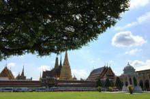 曼巴路线 开启泰国之旅