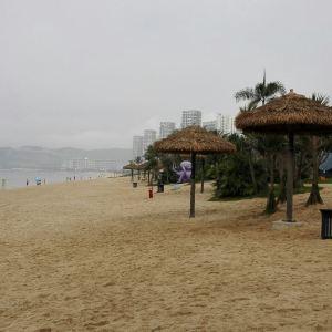 熊猫黄金海岸旅游景点攻略图