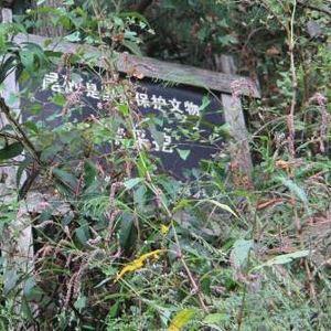 高岭土矿遗址园区旅游景点攻略图