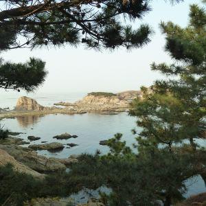 环海路风景线旅游景点攻略图