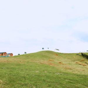 苏格兰牧场旅游景点攻略图