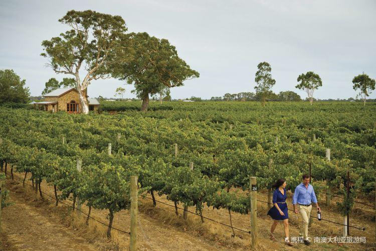 Coonawarra Wine Region1