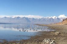 玛旁雍错是多少人心中的圣湖,而景色亦秀美壮观。