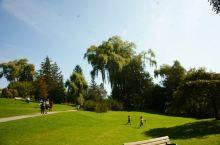 多伦多市爱德华公园,带外甥女游览
