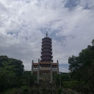大雁山旅游景点攻略图