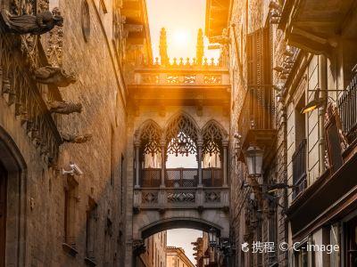 Gothic Quarter (Barri Gotic)