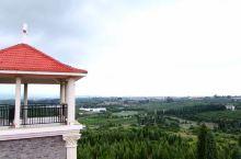 """弥勒,云南红!          熟悉弥勒,源于著名的红河烟厂,还有就是""""云南红""""葡萄酒。弥勒县是云"""