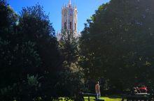 向着纯净出发D10 这天安排了奥克兰大学,来之前朋友说奥克兰大学校区比较分散,不太有特色,家里其他两