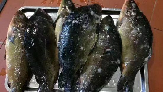全盛鼎鐵鍋燉魚店