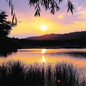 晚霞湖旅游景点攻略图