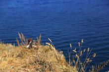 贝加尔湖区奥尔洪岛