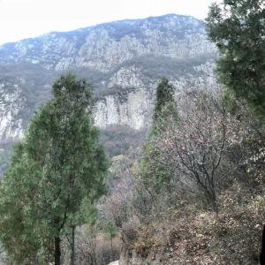 崛围山景区旅游景点攻略图