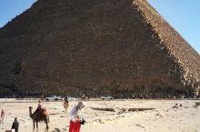 携程旅行网埃及游