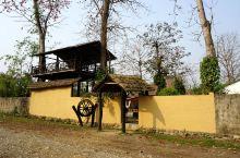 """我们没有入住奇达旺城区,而是入住森林公园内一家三星级的""""爱兰丛林度假小屋(ISLAND JUNGLE"""