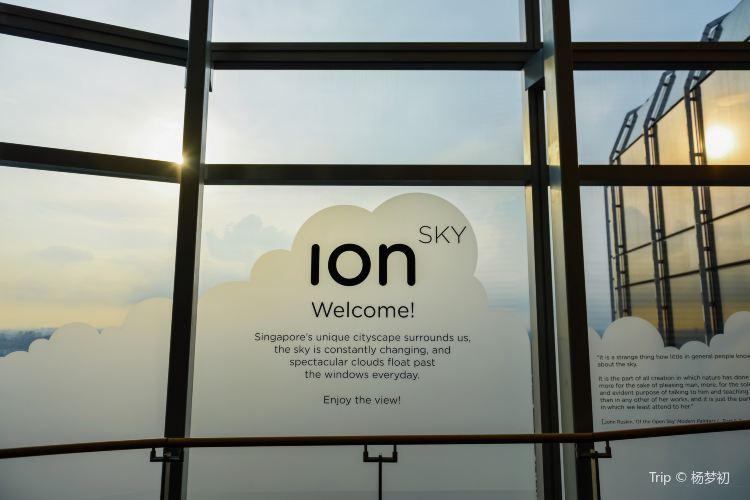 ION Sky4