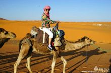 马耳他,西西里岛,突尼斯,摩洛哥/摩洛哥/撒哈拉沙漠