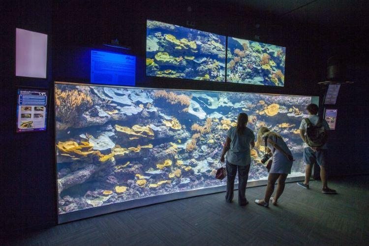 Aquarium de Paris2