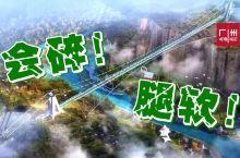 后天开放!广东这座会碎的3D玻璃桥刺激升级!广州出发仅24.5元!