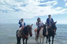 青海湖边策马