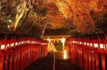 满是红叶的秋季京都,最适合散步了