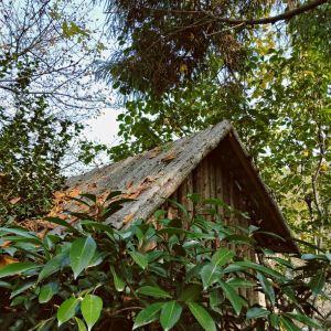 北岭山森林公园旅游景点攻略图