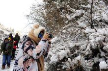 """新疆天山""""天池""""下雪了:这雪下的,有点特别!"""