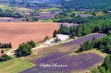 #向往的生活,看紫色的薰衣草海洋尝法国农家菜