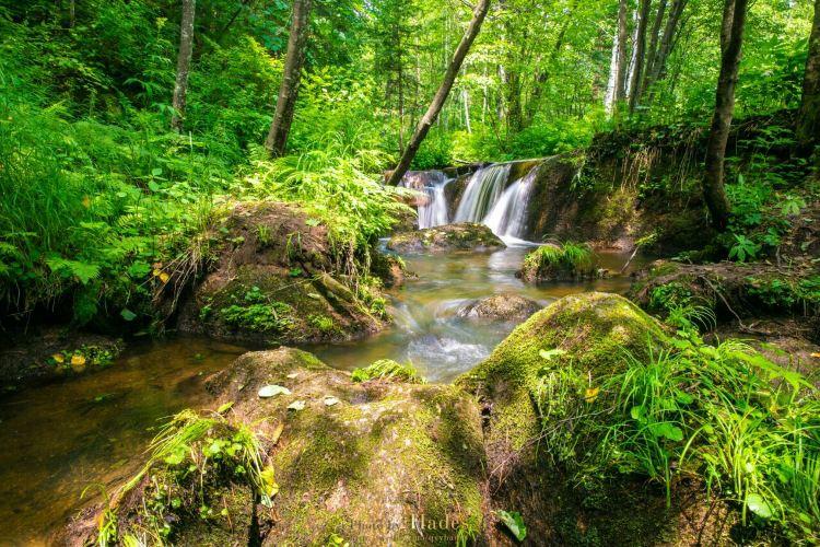 五營國家森林公園3
