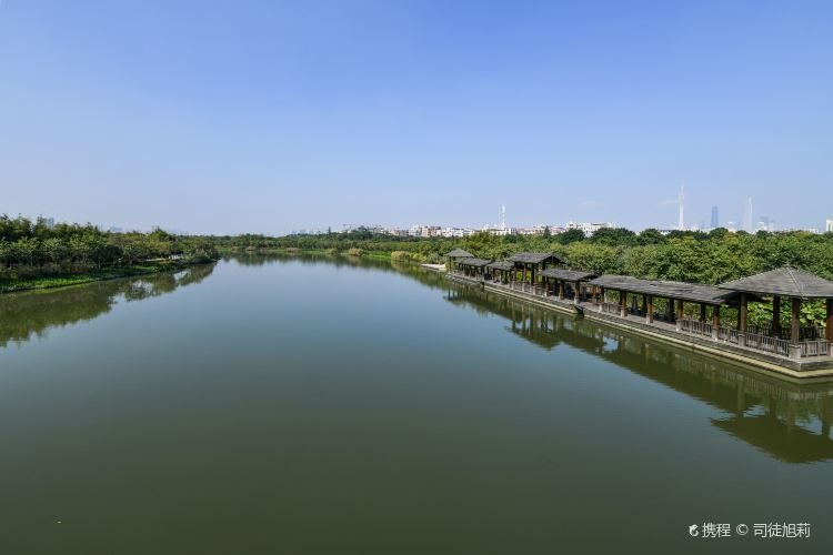 Haizhu National Wetland Park4