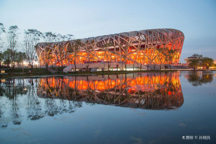 Bird's Nest (National Stadium)3