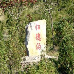 大武口森林公园旅游景点攻略图