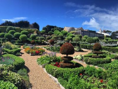 Mudbrick Restaurant and Vineyard