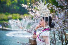 除却武大樱花雨,武汉后花园黄陂还有这9大赏花之地
