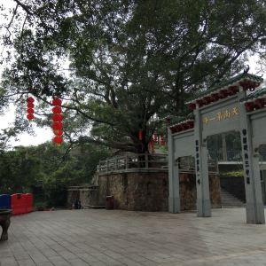 天南第一峰旅游景点攻略图