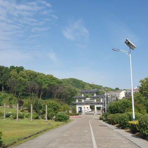 九龙山国家森林公园旅游景点攻略图